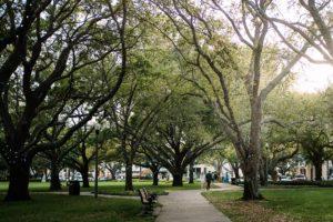 Vinoy Park in St Petersburg Florida