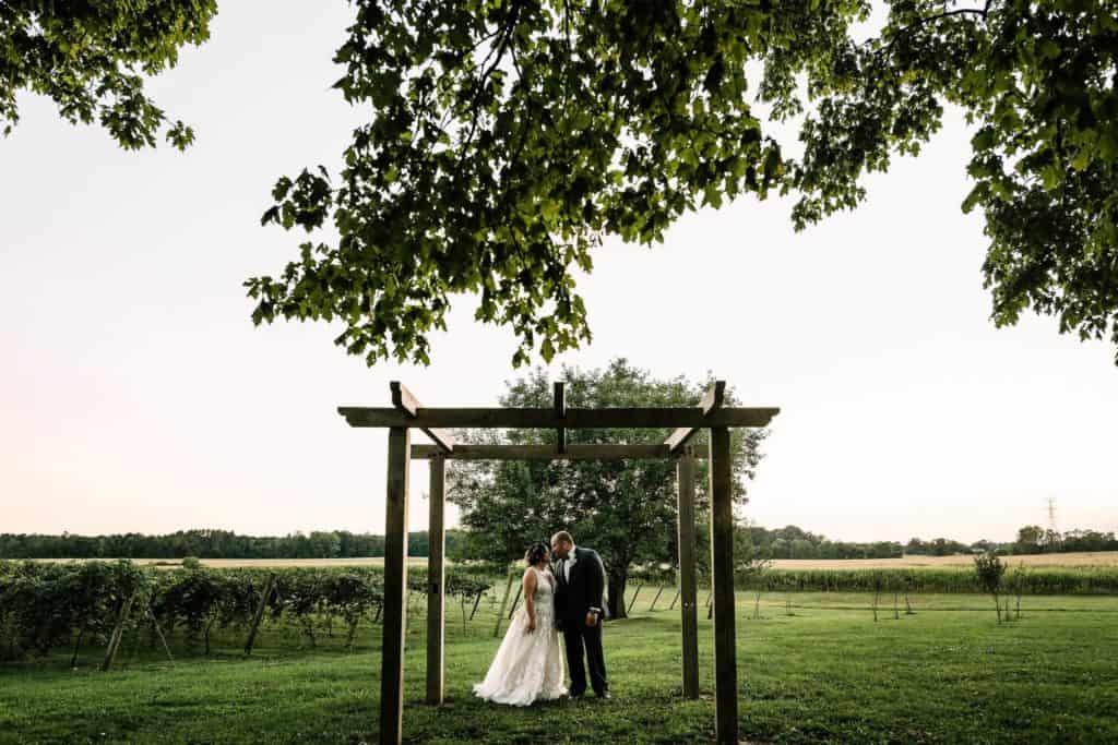 bride and groom at four corners winery vineyard wedding